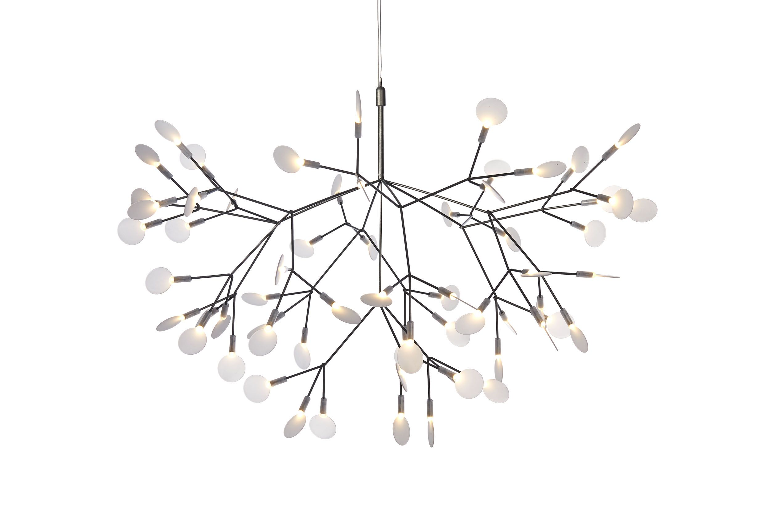Lyustry likewise Heracleum Hangl  Moooi further Random Bookcase together with Heracleum Ii Pendant Light From Moooi as well Heracleum Big L ada A Sospensione. on moooi heracleum